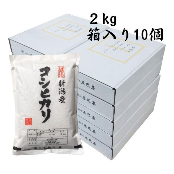 令和3年産 新米 新潟県産コシヒカリ 白米 2kg 箱入り10個 御贈答におすすめ