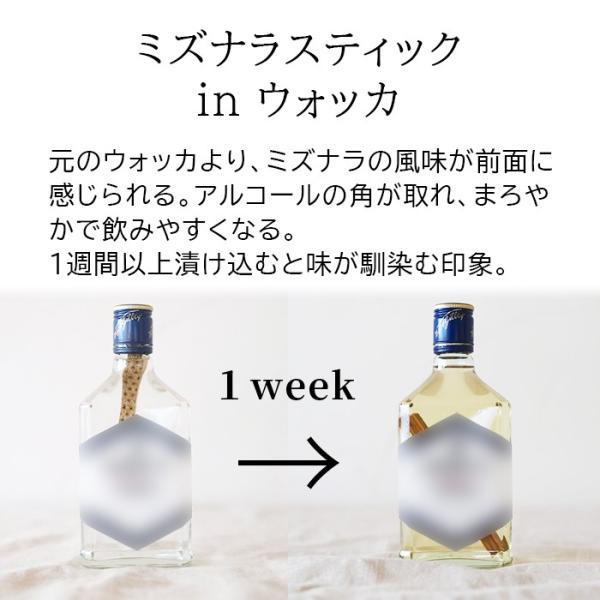 お酒 プレゼント ギフト 熟成 ミズナラエイジングスティックス MIZUNARA AGING STICKS 2本セット 焼酎 ウイスキー 日本酒 ワイン 和柄 国産 niimo 04