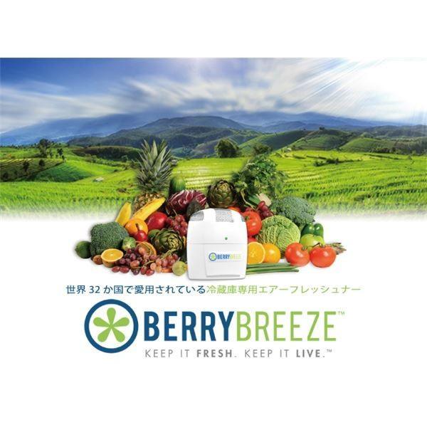 冷蔵庫専用空気清浄機 BerryBreeze BB001|nijiiromarket|02