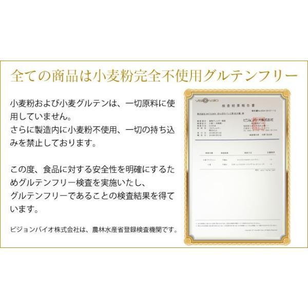 グルテンフリー パン 無添加 天然酵母  米粉パン 米粉100% 食パン nijinoho-store 03