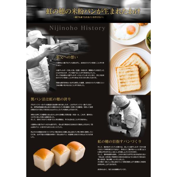グルテンフリー パン 無添加 天然酵母  米粉パン 米粉100% 食パン nijinoho-store 07