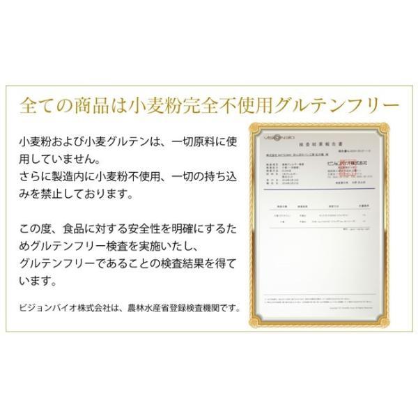 グルテンフリー パン 米粉パンお試しセット|nijinoho-store|18