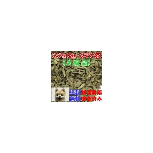 健康茶「グアバ茶」A級品(シジュウム茶) チャック付新鮮真空パック100g 健康茶 整腸 下痢 血糖値 美肌 コレステロール ダイエット 生活習慣病|nikkosabo|03