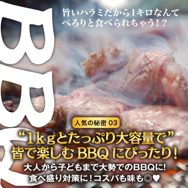 肉 焼肉 極旨秘伝のタレ漬け 牛ハラミ 1kg ランキング第1位 約4-6人前 送料無料 冷凍 牛肉 バーベキュー bbq 焼き肉 訳あり わけあり|niku-donya|05