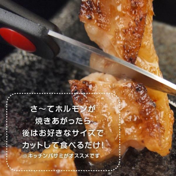 ロングカット国産牛小腸!肉厚プリ旨 味噌漬ホルモン【500g 約2-3人前】[ 焼き肉 / 焼肉 / BBQ / バーベキュー ]|niku-donya|05