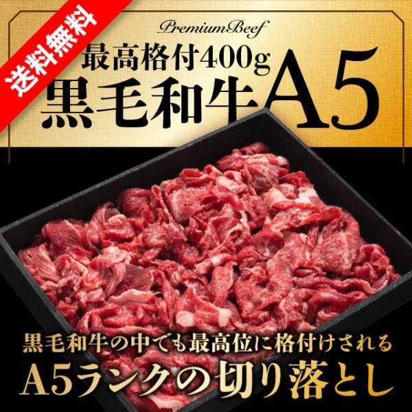 黒毛和牛 A5 超贅沢な 切り落とし 500g  焼肉 しゃぶしゃぶ すき焼き 牛肉 国産 ギフト  訳あり|niku-donya