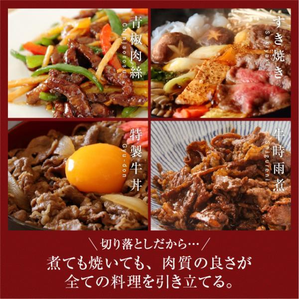黒毛和牛 A5 超贅沢な 切り落とし 500g  焼肉 しゃぶしゃぶ すき焼き 牛肉 国産 ギフト  訳あり|niku-donya|05