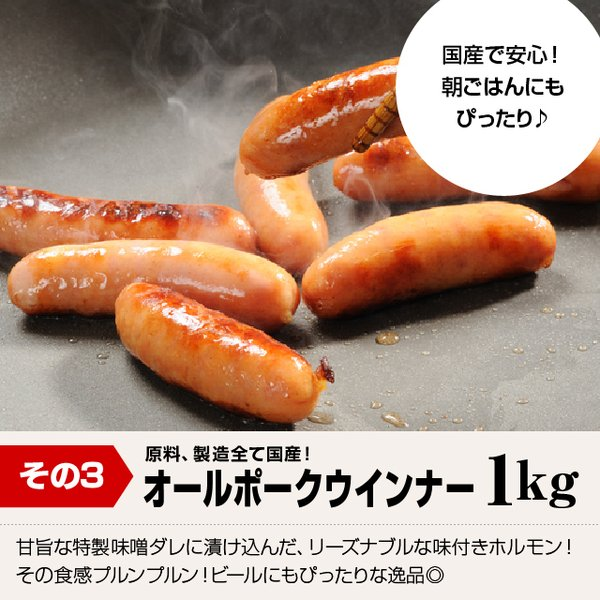 【送料込】メガ盛り3キロ!スーパーリーズナブル焼肉セット(キングカルビ500g+牛ホルモン500g+ウィンナー1kg+豚バラ500g+豚とろ500g)|niku-donya|05