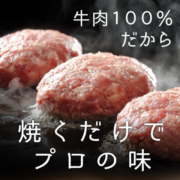 エスパルス観戦チケットが当たる!これが話題のハンバーグ [ザ・お肉] The Oniku【肉】そのまんま肉バーグ【180g×3個入 計540g】|niku-donya|05
