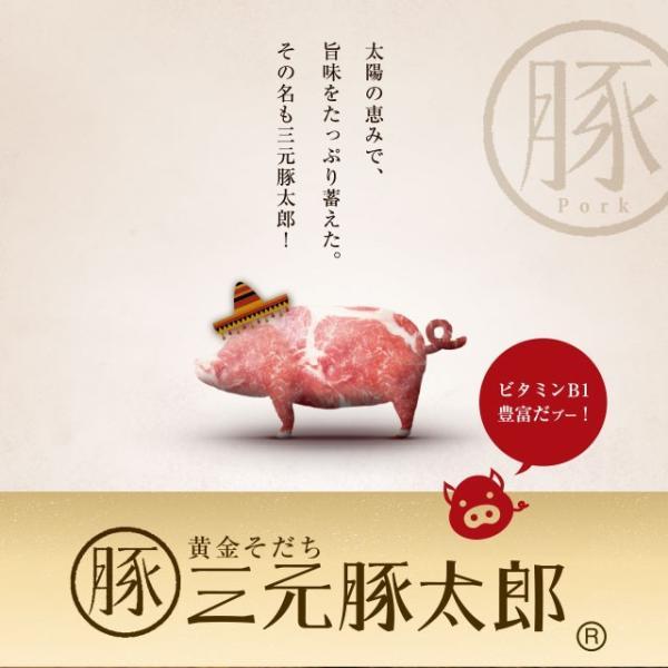 【送料無料】黄金そだち 三元豚太郎(R) 塩ダレ豚ハラミ【1kg(500g×2パック)約4-6人前】[ 焼き肉 / 焼肉 / BBQ / バーベキュー ]|niku-donya|05