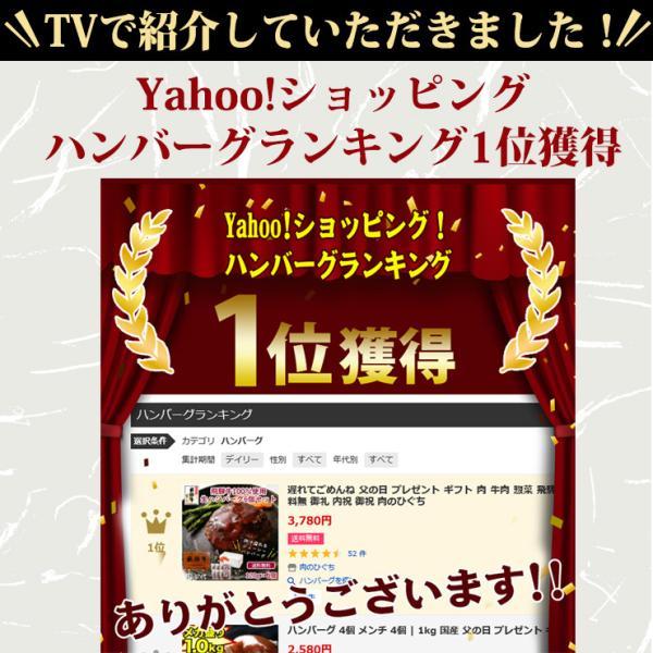 牛肉 和牛 惣菜 ギフト 飛騨牛 肉 生ハンバーグ 120g×6個 まとめ買い 御礼 御祝 内祝 nikunohiguchi-yafuu 03