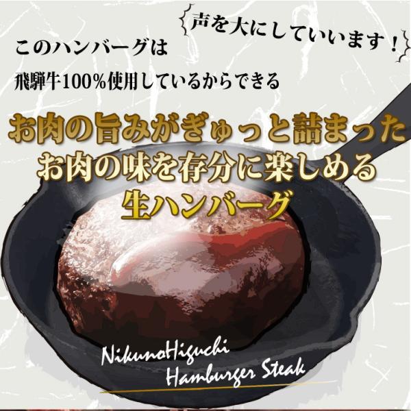 牛肉 和牛 惣菜 ギフト 飛騨牛 肉 生ハンバーグ 120g×6個 まとめ買い 御礼 御祝 内祝 nikunohiguchi-yafuu 04