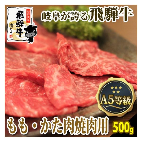 焼肉 肉 牛肉 飛騨牛 A5 ももかた肉500g おうち焼き肉 バーベキュー 黒毛和牛 お取り寄せ グルメ