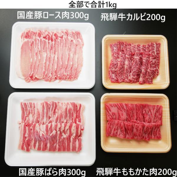 バーベキューセット 1kg 約4〜5人分 食材 牛肉 豚肉 焼肉 BBQ 飛騨牛 メガ盛 カルビ 国産|nikunohiguchi-yafuu|03
