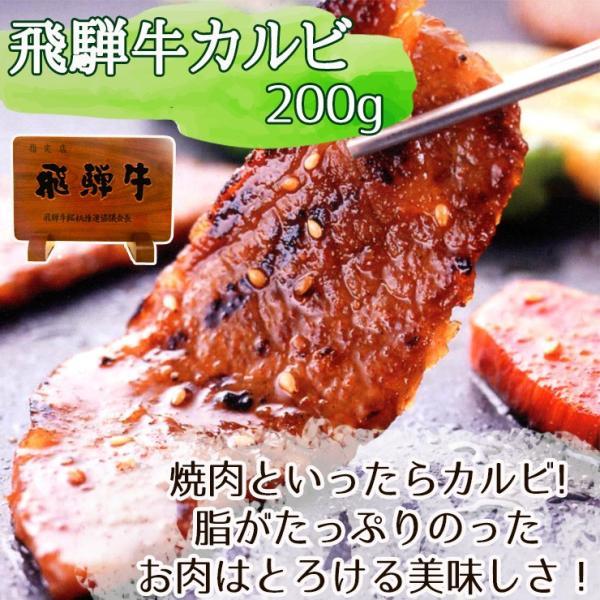 バーベキューセット 1kg 約4〜5人分 食材 牛肉 豚肉 焼肉 BBQ 飛騨牛 メガ盛 カルビ 国産|nikunohiguchi-yafuu|04