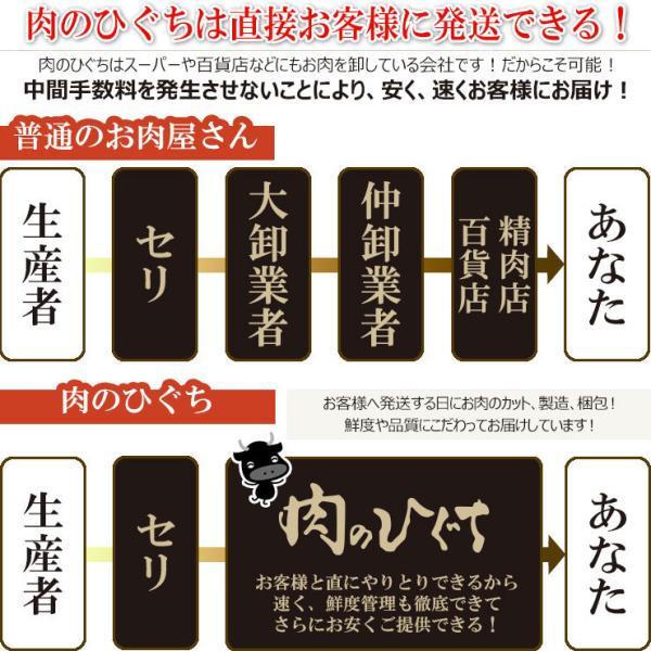 牛肉 焼肉 飛騨牛 メガ盛カルビ1kg 500g×2p 約3〜4人 大容量 肉 バーベキューセット 和牛 国産 焼き肉 送料無|nikunohiguchi-yafuu|12
