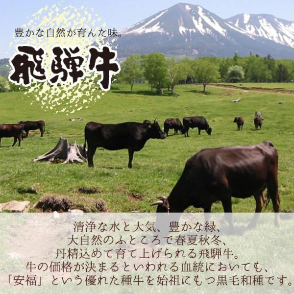 牛肉 焼肉 飛騨牛 メガ盛カルビ1kg 500g×2p 約3〜4人 大容量 肉 バーベキューセット 和牛 国産 焼き肉 送料無|nikunohiguchi-yafuu|04