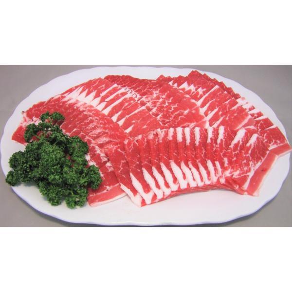 メガ盛り焼肉セット 10~15人前 今なら豚バラ300gおまけ!A|nikunokinoshita|02