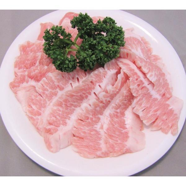 メガ盛り焼肉セット 10~15人前 今なら豚バラ300gおまけ!A|nikunokinoshita|05