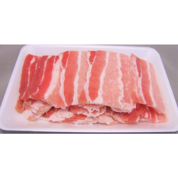 メガ盛り焼肉セット 10~15人前 今なら豚バラ300gおまけ!A|nikunokinoshita|07