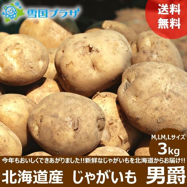 【2021年/予約】新じゃが じゃがいも 北海道産 男爵いも 3kg ジャガイモ 馬鈴薯 越冬 北海道 応援 支援 食品 グルメ 野菜 お取り寄せ