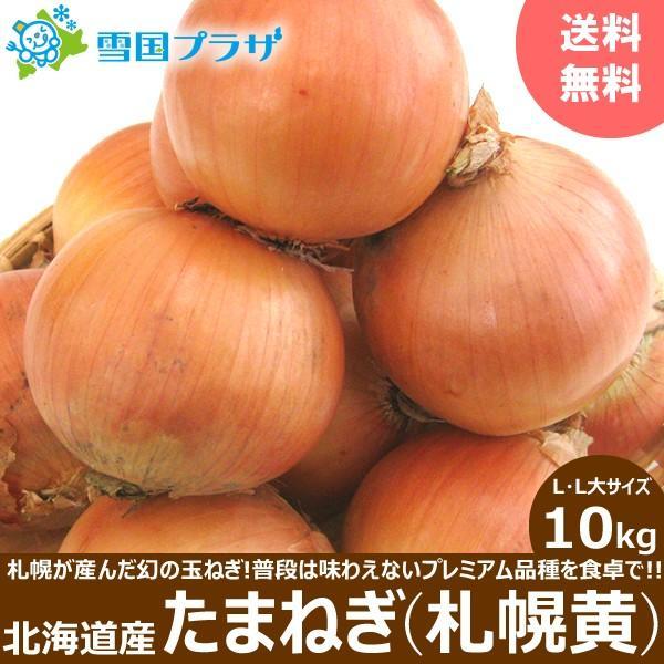 【2021年/予約】玉ねぎ 北海道産 札幌黄 10kg たまねぎ タマネギ 玉ネギ 玉葱 北海道 お取り寄せ