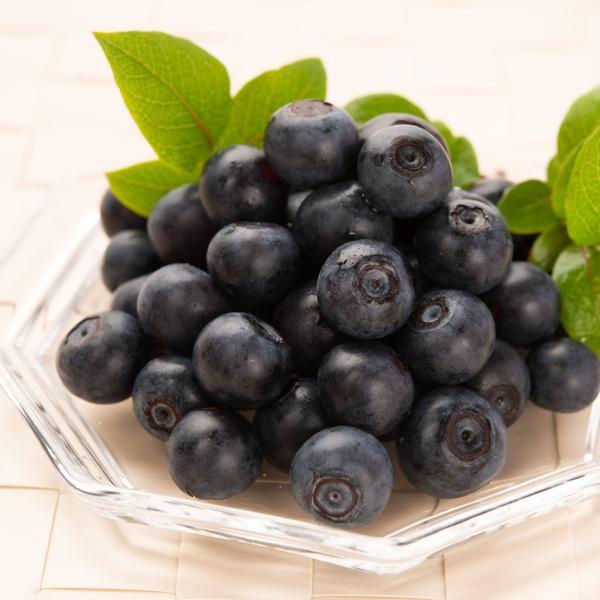 ブルーベリー 紫宝の瞳 完熟ブルーベリー 1kg 果実 フルーツ 国産 果物 1kg 三重県産 いのさん農園