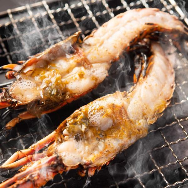 バーベキューセット 海鮮6種のBBQセット 海鮮 貝 イカ 伊勢海老 サザエ 高級食材 詰め合わせ 国産 水谷水産