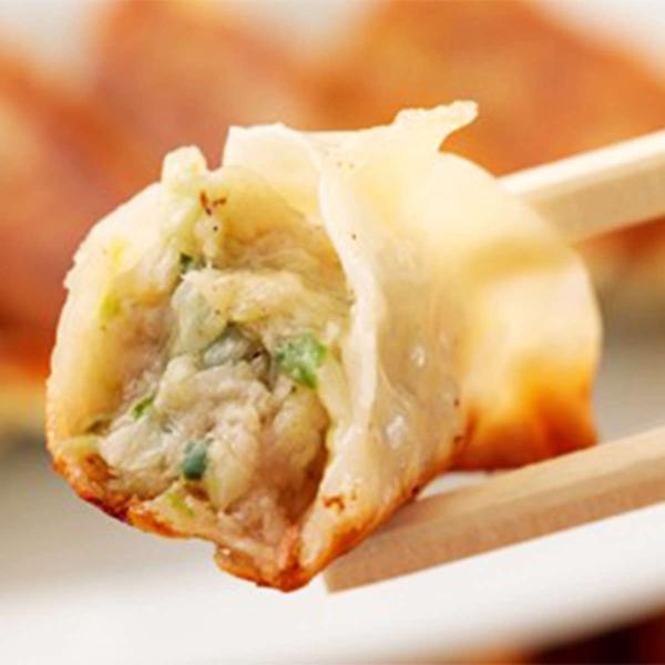 宮崎県産お米豚餃子 16パック 詰め合わせ セット 餃子 冷凍 ぎょうざ 中華 惣菜 国産 宮崎 エムツー