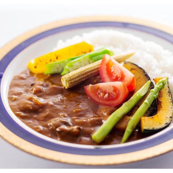 健康カレー お試しセット A ノンオイル野菜カレー カレー 惣菜 脂質0 レトルトカレー 低カロリー 簡単調理 野菜 ポスト投函便
