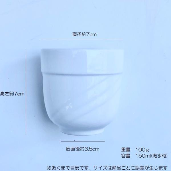 お茶カップソーサー セット 150ml  コーヒー 珈琲 コップ 強化磁器 白磁 無地 シンプル おしゃれ 軽い 北欧風|nishida-store|02