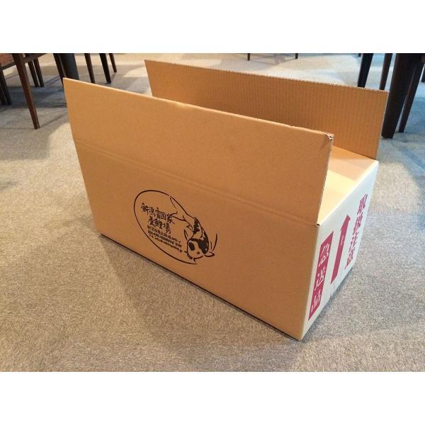 【商品No1010】 丹頂紅白 メス 61cm|nishikigoishop|04
