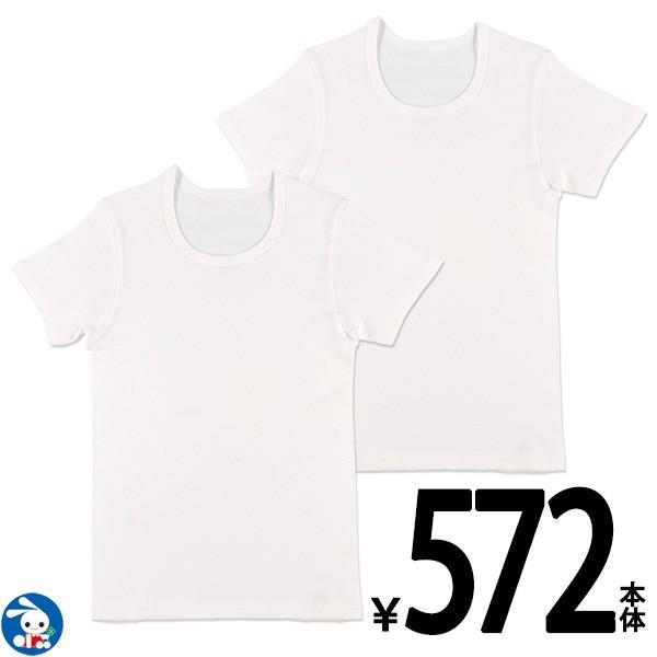 カリフォルニア綿2枚組半袖シャツ(白無地)【150cm】
