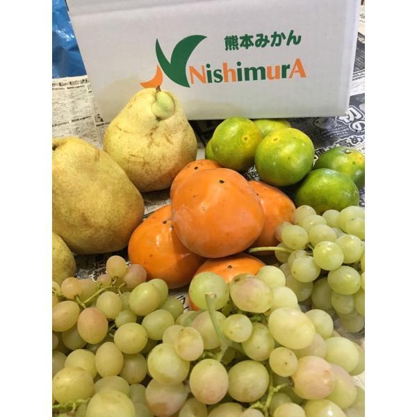熊本県 西村果樹園 秋の味覚セット みかん 柿 ラフランス ブドウ