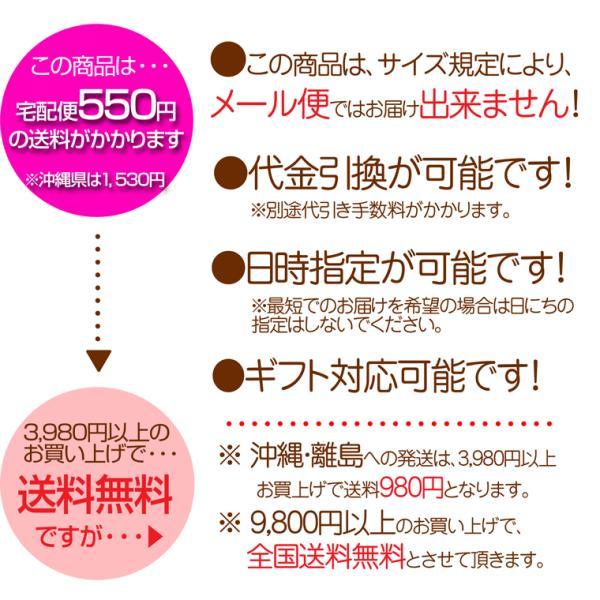ぶどう糖 ダイエット シュガー 国産原料使用 サツマイモ由来 業務用 固形ブドウ糖Pure500g  660円 nishizawach 04