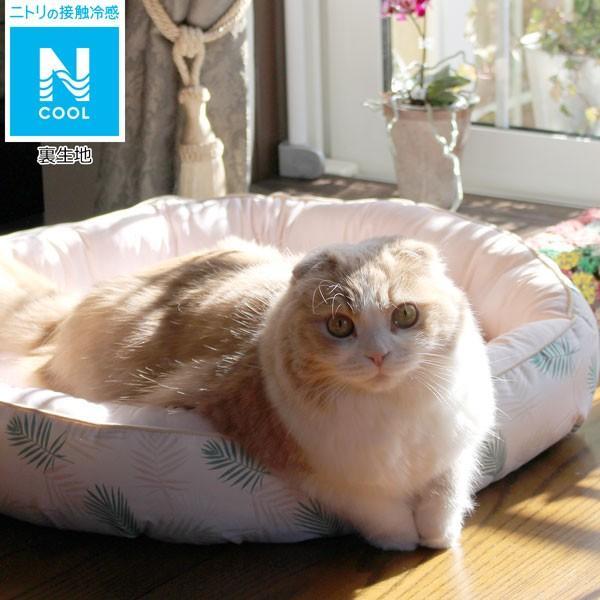 犬・猫用ペットベッド(Nクール q-o マル RO)