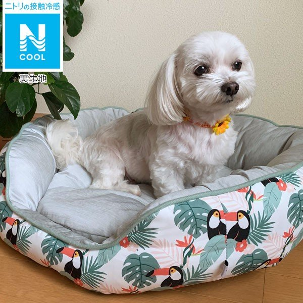 犬・猫用ペットベッド(Nクール q-o オオハシ)