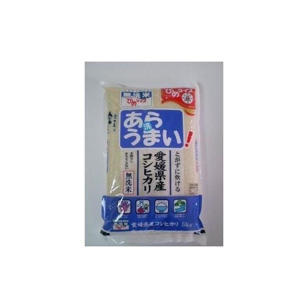 無洗米 あらうまい コシヒカリ 5kg 令和3年愛媛県産精米