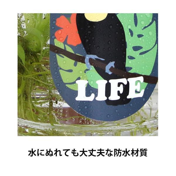 赤毛のアン イラスト キャリアステッカー 大きい 防水 ノートPC 自転車 ボード 窓ガラスなどに (絵:キム・ジヒョク)|niyantarose|05