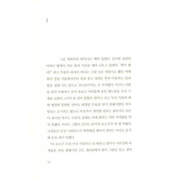 韓国語 小説 『ハリー セット - 全2巻』 著:コン・ジヨン|niyantarose|15