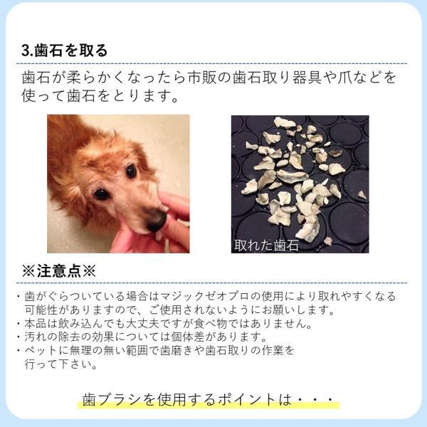 マジックゼオ プロ 40cc ペット用 犬 歯の黄ばみ 歯石 除去 歯磨き粉 オリジナル 歯 ブラシ カップ スケール 4点セッ ト|niziiro-store|13