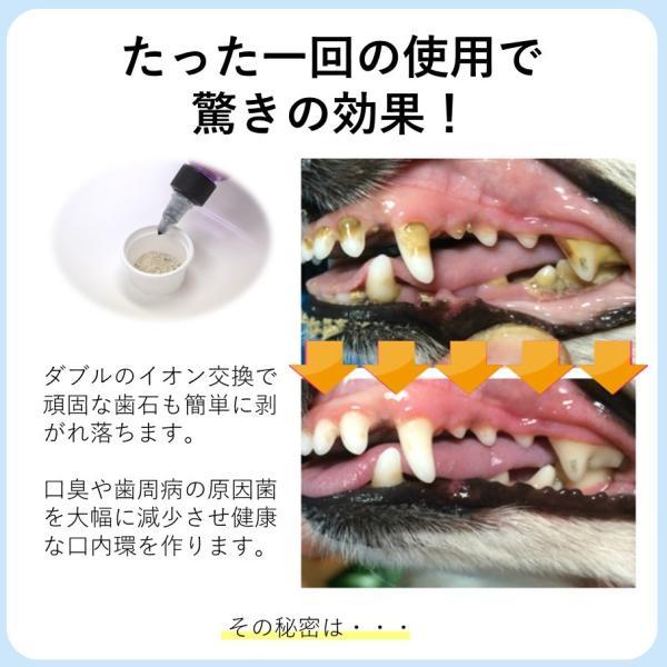 マジックゼオ プロ 40cc ペット用 犬 歯の黄ばみ 歯石 除去 歯磨き粉 オリジナル 歯 ブラシ カップ スケール 4点セッ ト|niziiro-store|06