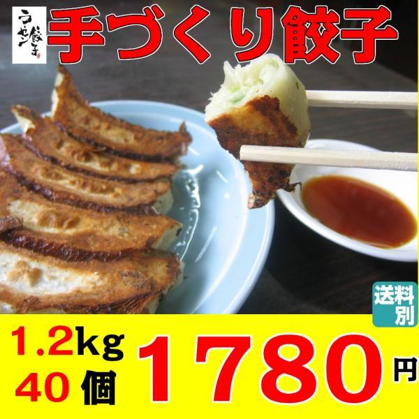 餃子 1.2kg 40個 手づくり 冷凍食品 お試し 訳あり お取り寄せグルメ クール便 ラーセン餃子