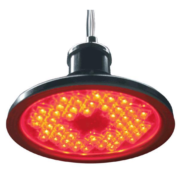 電照菊等の開花抑制には、LEDランプが最適 **あぐりライト**|nkworks-agri-pro