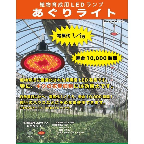 電照菊等の開花抑制には、LEDランプが最適 **あぐりライト**|nkworks-agri-pro|02