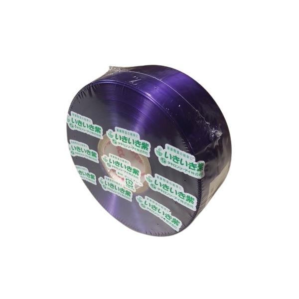 スズランテープ レコード巻 いきいき紫色(300m)
