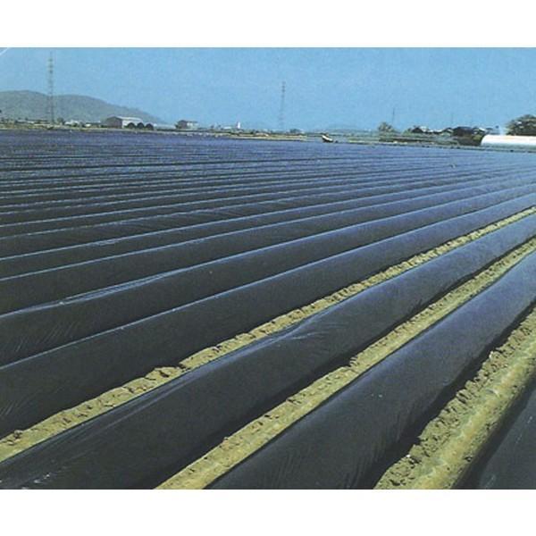 農業用マルチシート 国産黒マルチ 厚さ0.02mm×幅110cm×長さ400m 2本セット