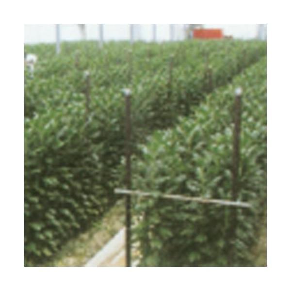 農業用支柱 タキロン 打込新杭 グイット  径31.8mm×長さ180cm  10本