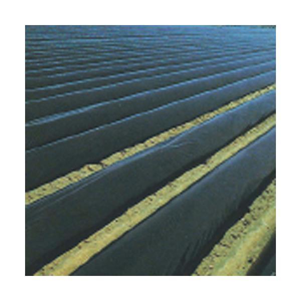 農業用マルチシート 国産黒マルチ 厚さ0.05mmX幅180cmX長さ100m 2本セット