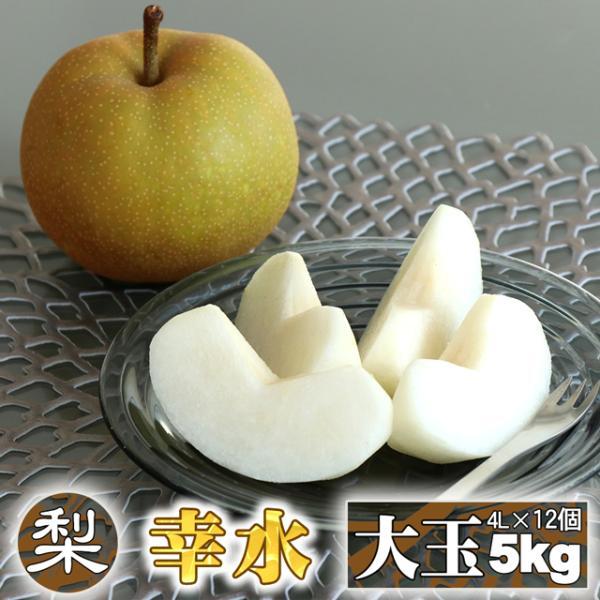 梨 幸水 約 5kg 送料無料 大玉 4L(約420g)×12個 数量限定 なし 栃木 ふるさと 果物 くだもの フルーツ ギフト 贈答用 贈答品 和梨 贈り物 プレゼント